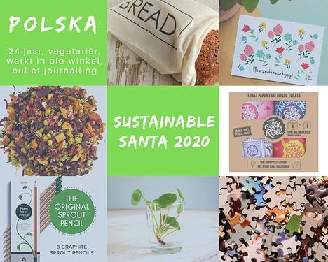 Sustainable Santa 2020