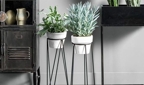 plantenstandaard-karwei-e1516100428848